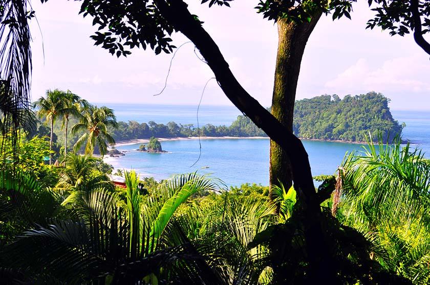 Parque Nacional Manuel Antonio en Costa Rica, el más pequeño y más popular - manuel antonio - Parque Nacional Manuel Antonio en Costa Rica, el más pequeño y más popular