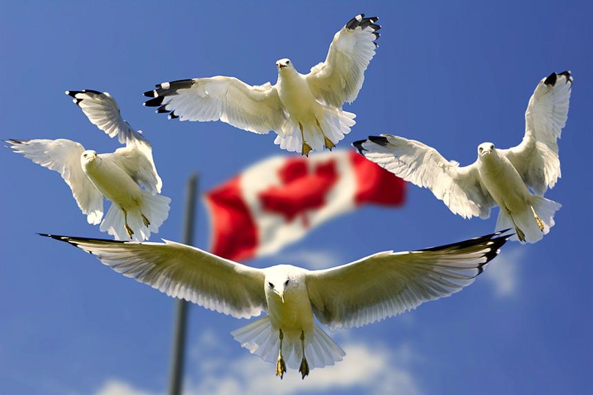 canadá - portada viajar a canada - Guía de viajes y visa para Canadá