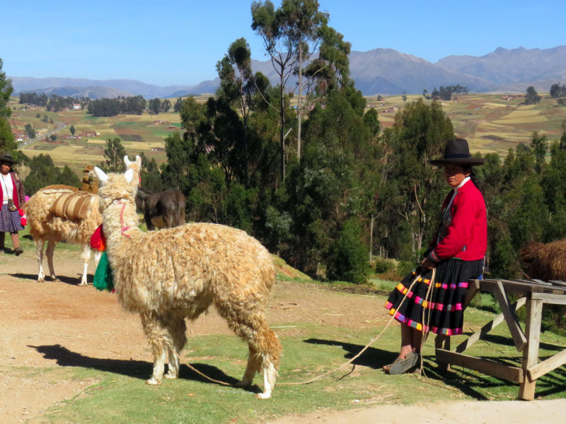 valle sagrado de los incas peru valle sagrado de los incas - valle sagrado de los incas peru 09 800x600 - Valle Sagrado de los Incas en Perú