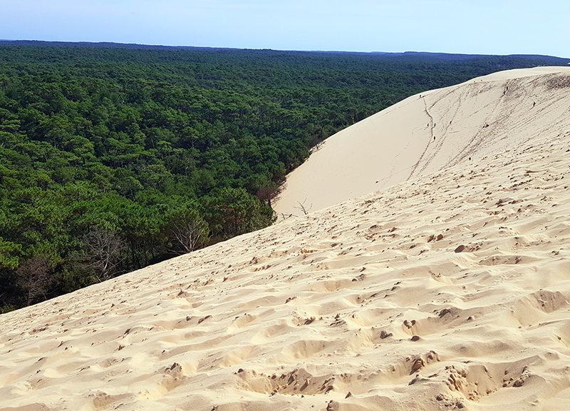dune du pilat bourdeaux burdeos francia duna dune du pilat - dune du pilat bourdeaux burdeos francia duna 00 800x576 - Dune du Pilat, la duna de arena más alta de Europa