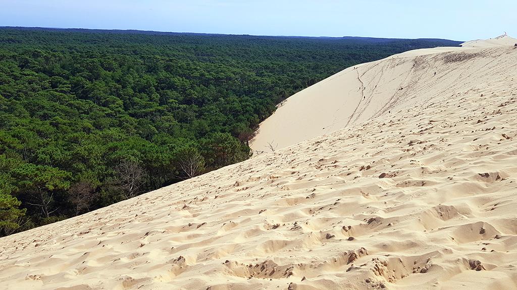 dune du pilat bourdeaux burdeos francia duna